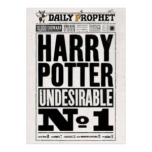 Minalima Plagát Denný prorok Harry Potter Undesirable No.1 - Harry Potter